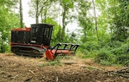 New Fecon FTX200 cutting trees