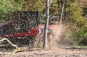 New Mulching Tractor cutting trees